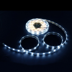 Ruban LED 5m - 8mm - IP20 -  9.6W/mètre 6000K