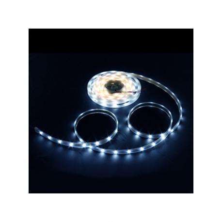 Ruban LED 5m - 8mm - IP65 -  9.6W/mètre 6000K